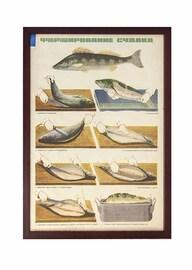 Плакат «Фарширование судака»
