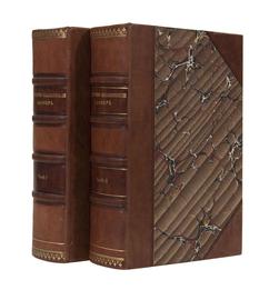 Общий церковно-славяно-российский словарь (2 части)