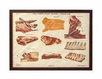Плакат «Схема разделки передней четвертины говяжьей туши»