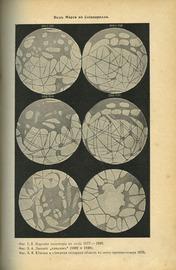 Эволюция мира = werden und vergehen (в 3-х томах)