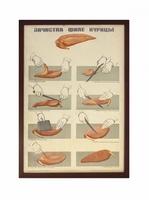 Плакат «Зачистка филе курицы»