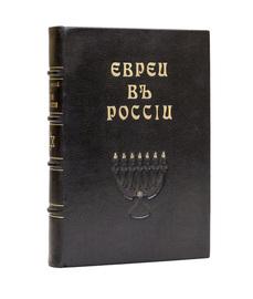 Евреи в России. Очерки экономического и общественного быта русских евреев