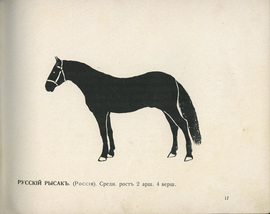 Альбом разных русских и иностранных пород лошадей. (Альбом лошадей разных пород в силуэтах)