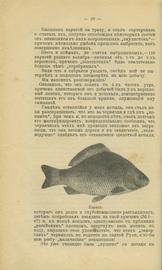 Уженье рыбы. Сборник руководительных статей и рассказов
