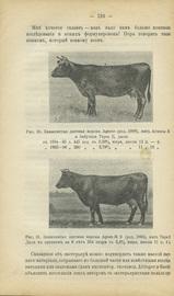 Кормление молочных коров, их содержание, доение в связи с организацией стада и всего молочного дела. Руководство для всякого интеллигентного читателя