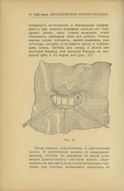 Конволют из 4-х выпусков Библиотеки журнала «Практическое зубоврачевание»