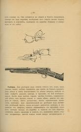 Охота и спорт