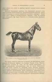 Книга о лошади. Настольная книга для каждого коннозаводчика, коневода, коневладельца и любителя лошади