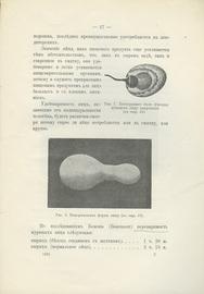 Яйцо, как пищевой продукт