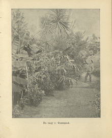 Цихис-дзири. Дачное место близ Батума