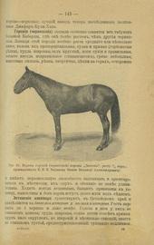 Лошадь. Сельско-хозяйственное коневодство. Руководство для сельских хозяев
